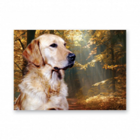Golden Retriever card with scenic background